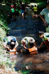 那須 花と体験の森 夏限定 ☆ 自然の中で森の川遊び ☆ 昔ながらのお子様の涼遊び ☆ <br />7月21日スタート☆