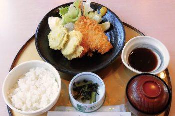 アジフライとレンコンのはさみ揚げ定食
