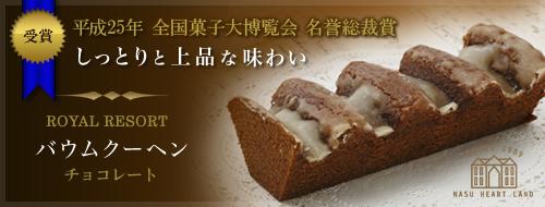 ≪平成25年 全国菓子大博覧会 名誉総裁賞 受賞≫しっとりと上品な味わい ロイヤルリゾートバウムクーヘン チョコレート