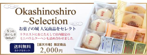 お得な菓子の詰め合わせ「公式オンラインショップ数量限定商品」お菓子の城 Special(16個+1箱入り)1500円