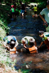 那須 花と体験の森 夏限定 ☆ 自然の中で森の川遊び ☆ 昔ながらのお子様の涼遊び ☆ <br />7月21日スタート(予定)☆