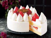 大人気の「 初摘み、完熟、とちおとめのクリスマスケーキ ★」<br />お菓子の城 直営農園「いちごの森」のフレッシュな朝摘み苺です